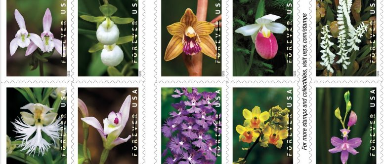 Wild Orchids stamps